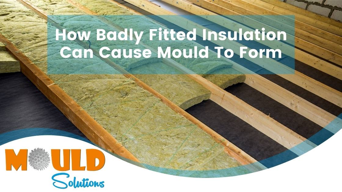 How Badly Fitted Insulation Can Cause Mould To Form mould solutions
