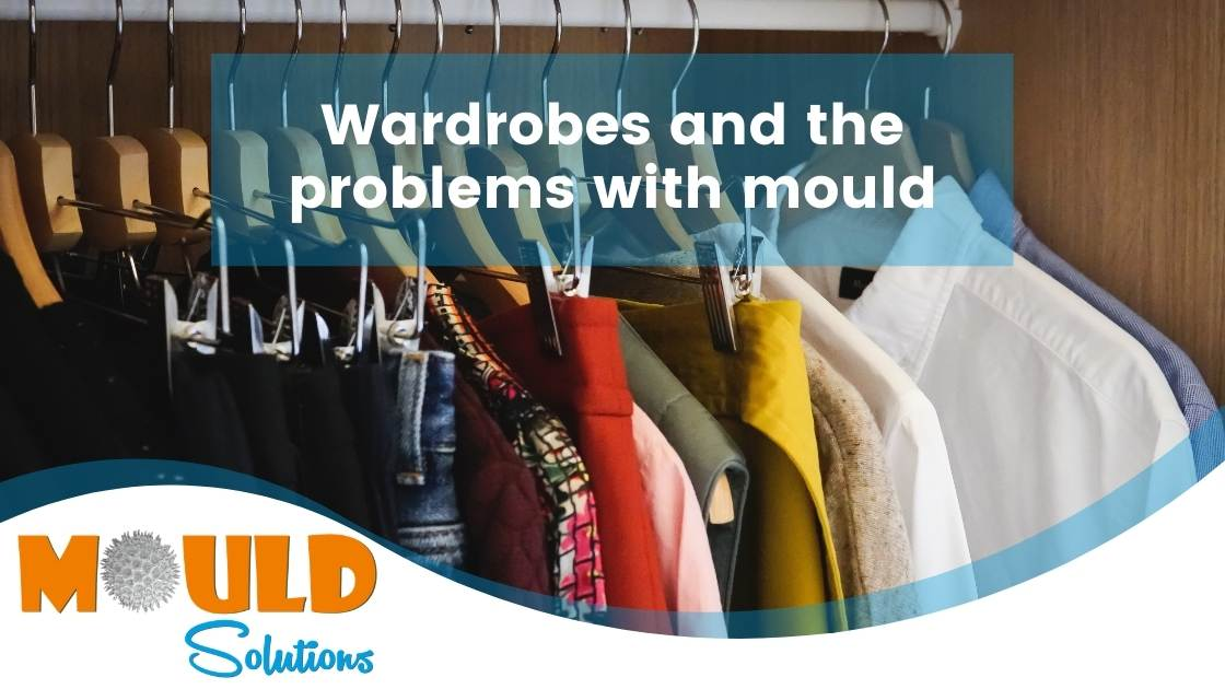 Wardrobes mould problems mould solutions