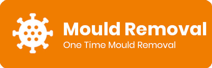 one time mould removal