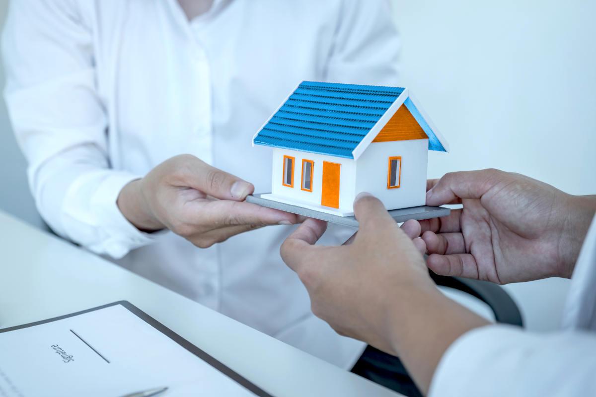 Landlords real estate mould solutions